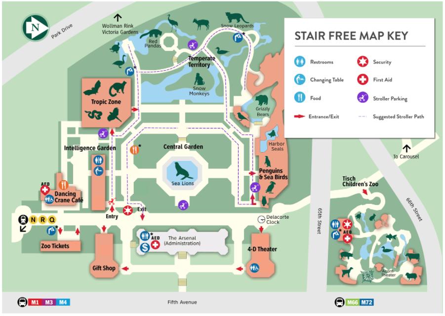 staur free map.png