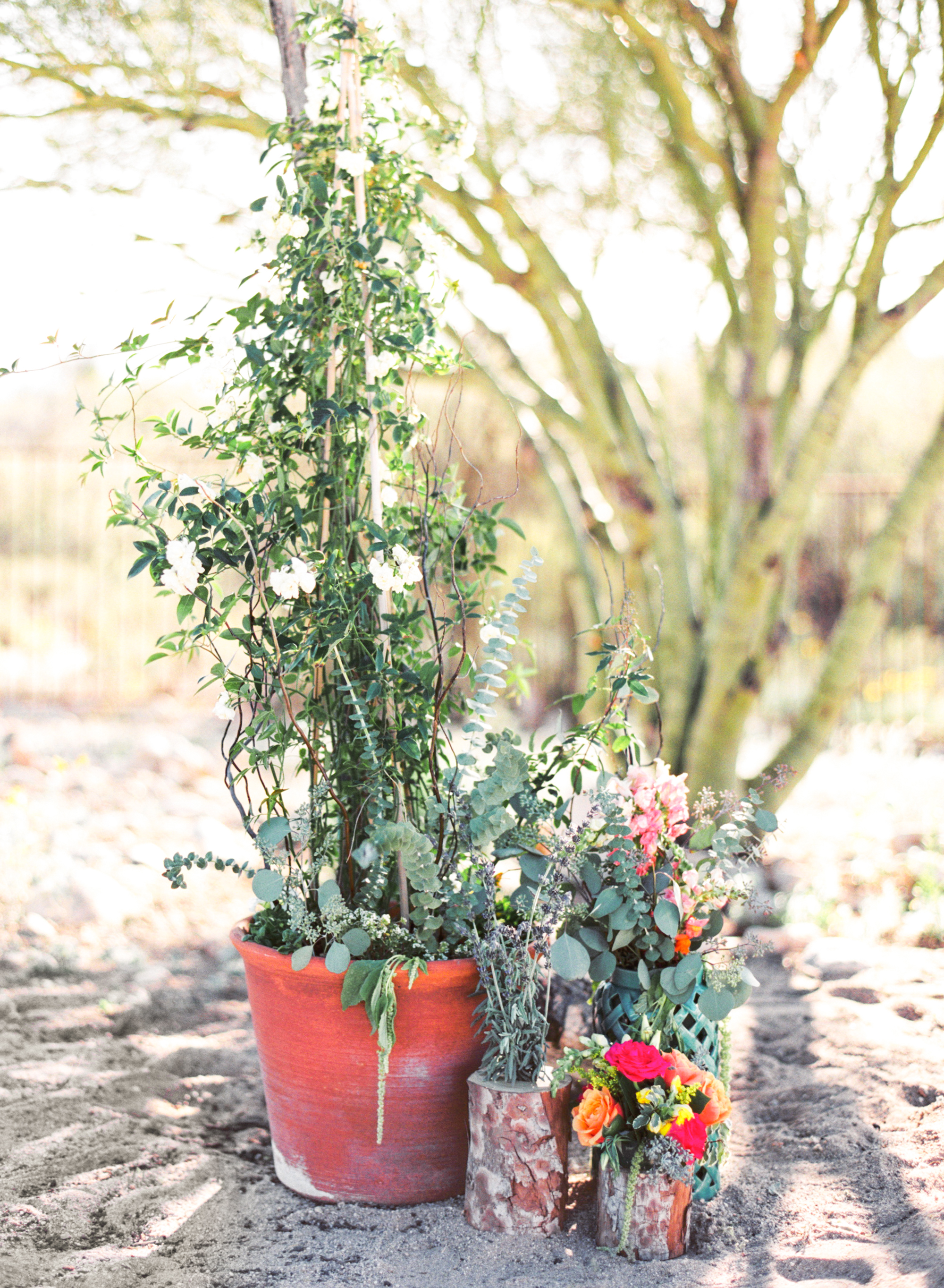 Tucson desert wedding florals