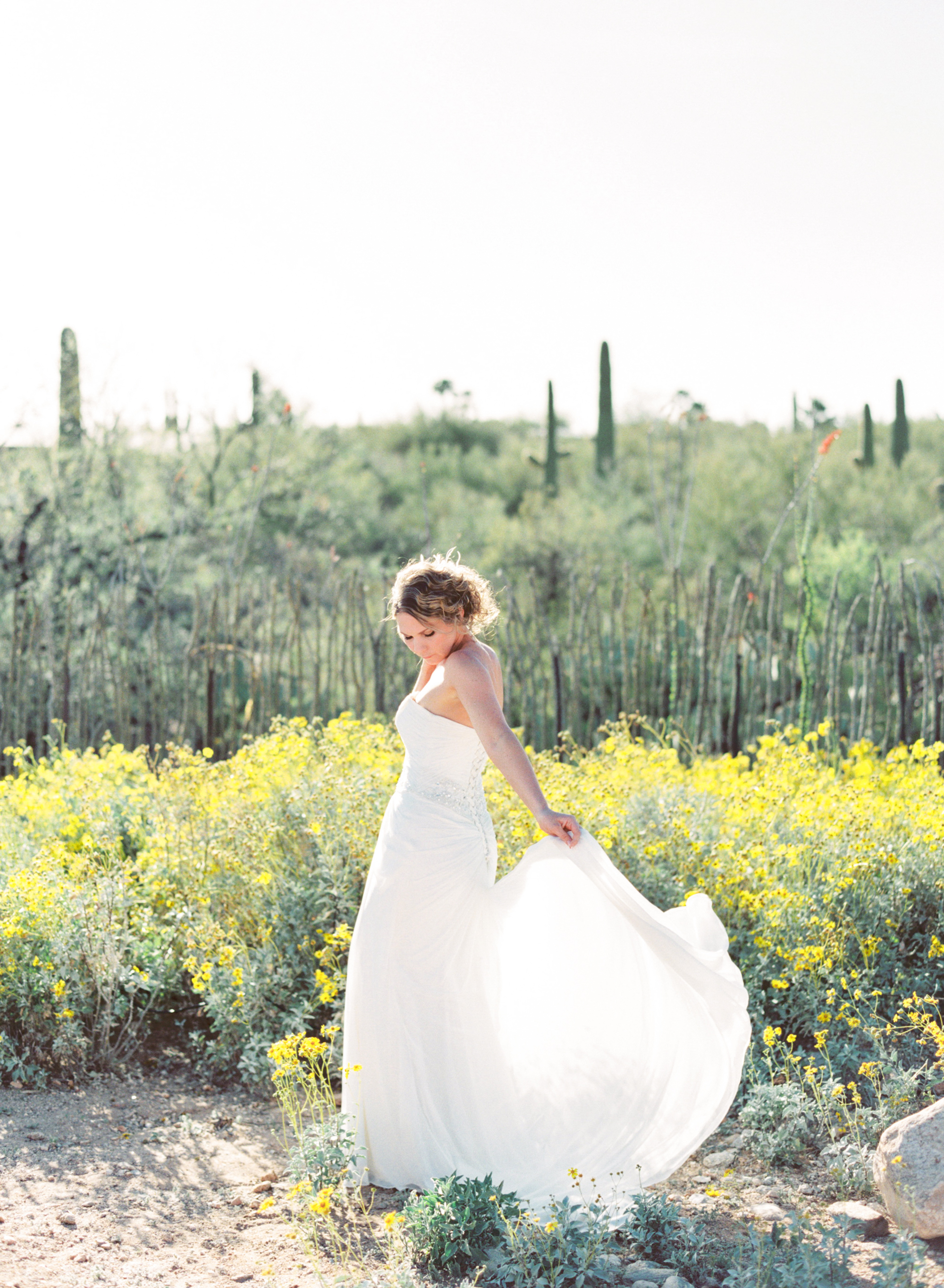 Bride in Tucson wildflowers