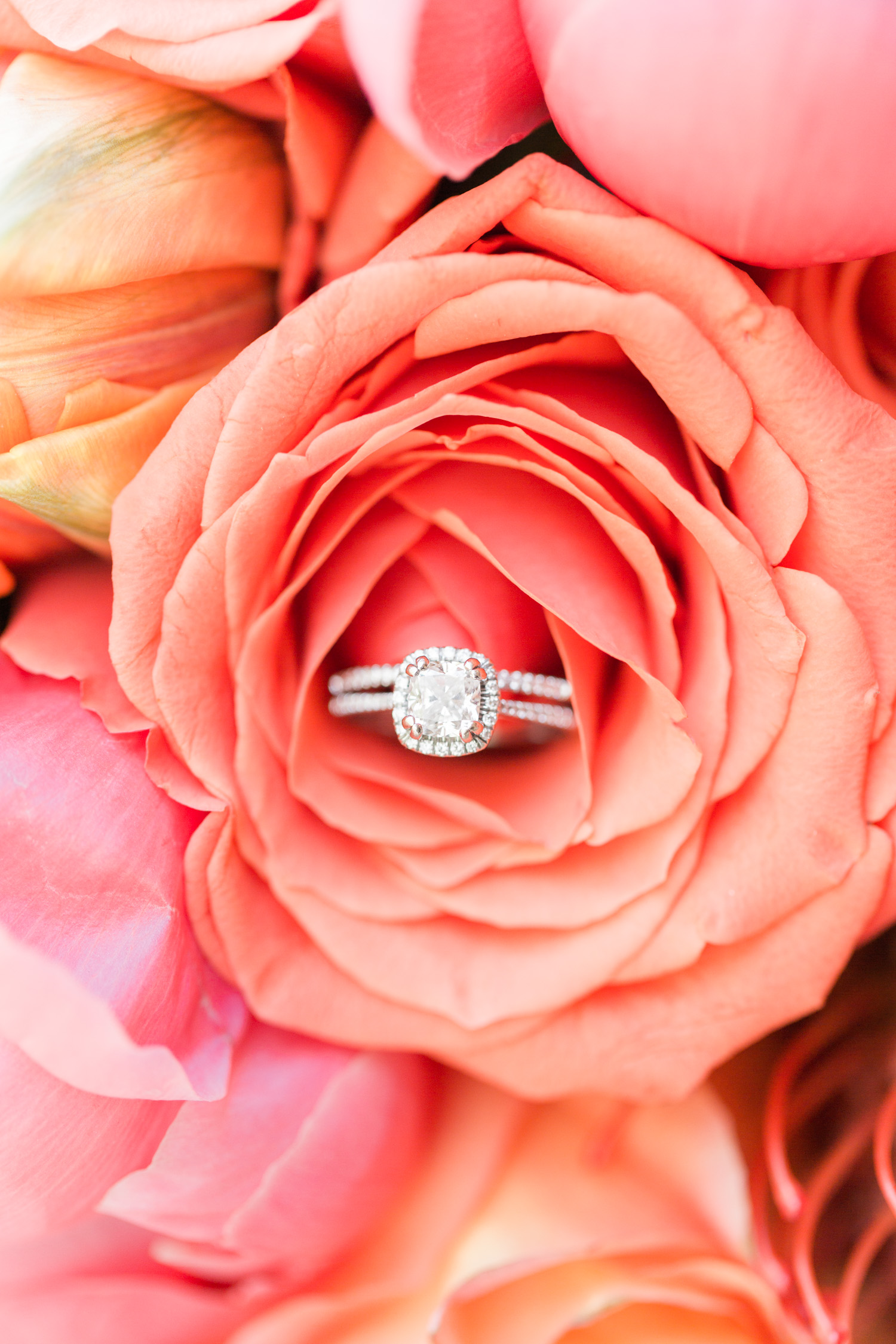 Gorgeous cushion cut halo engagement ring shot!