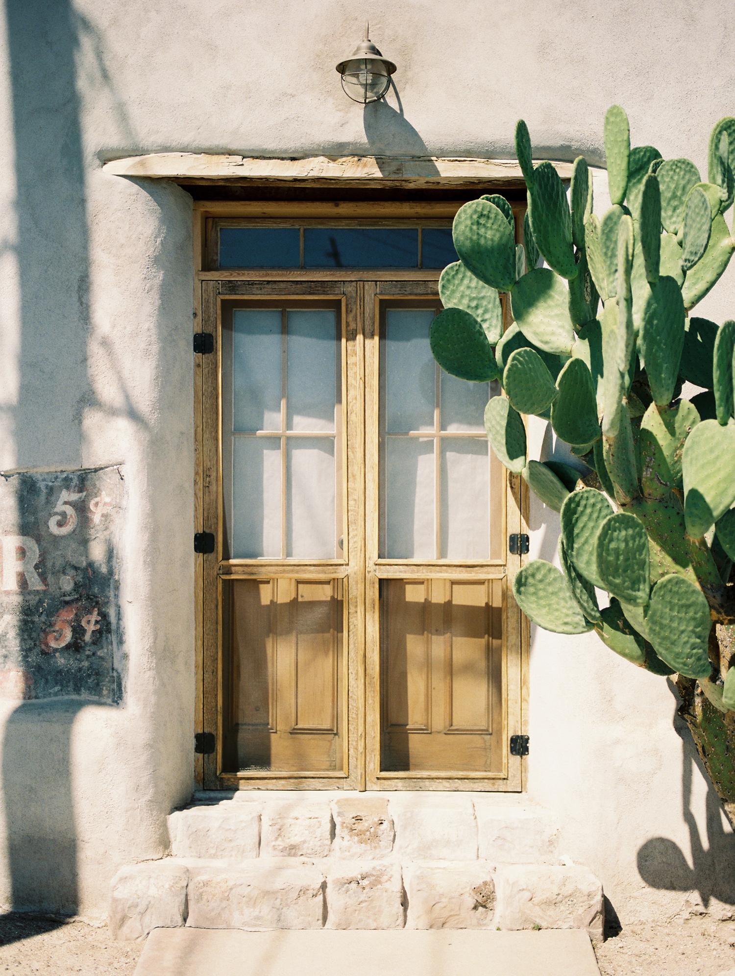 Tucson Barrio old door with cactus