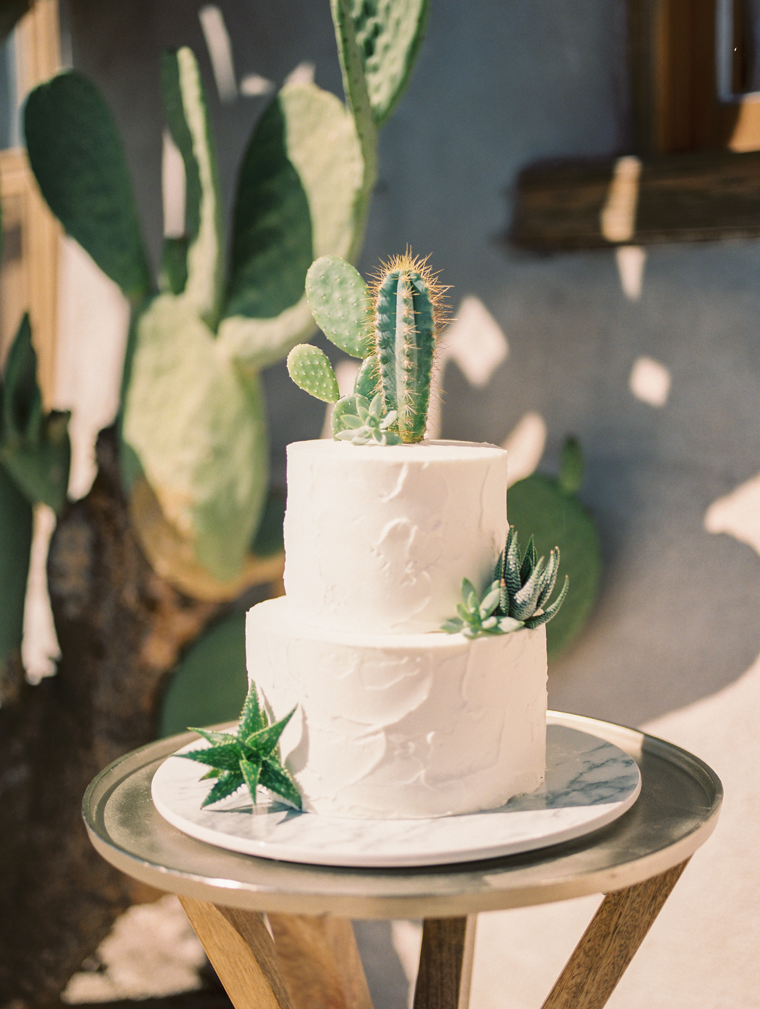 No desert wedding is complete with out a desert cake! Real cactus & succulent cake toppers