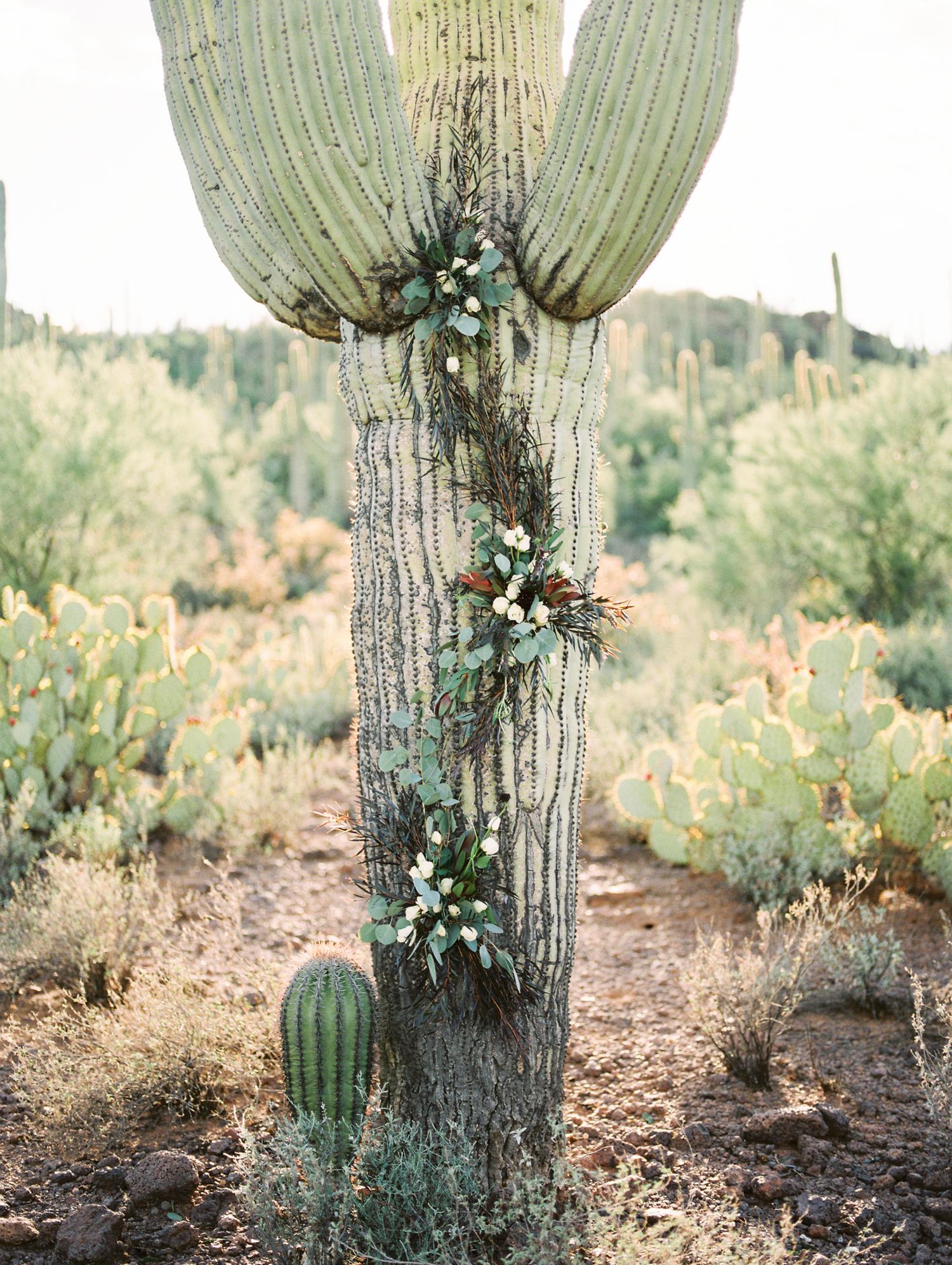 Alexis Grace Florals is amazing! Saguaro Cactus floral installation