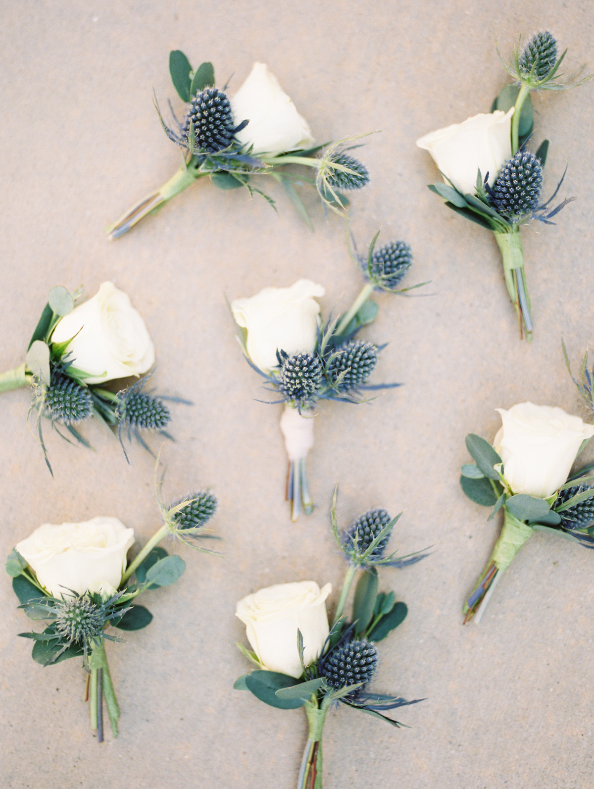Lovely blue thistle boutonniere's by Soriee Design and Events   Harrison & Jocelyne's gorgeous Temecula wedding at Wiens Family Cellars captured by Betsy & John Photography