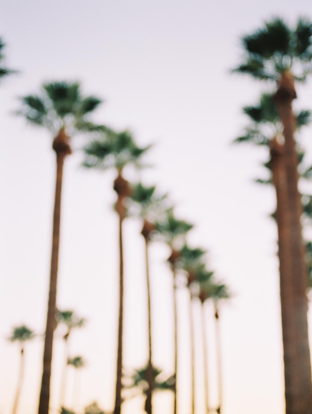 royal-palms-resort-6.jpg