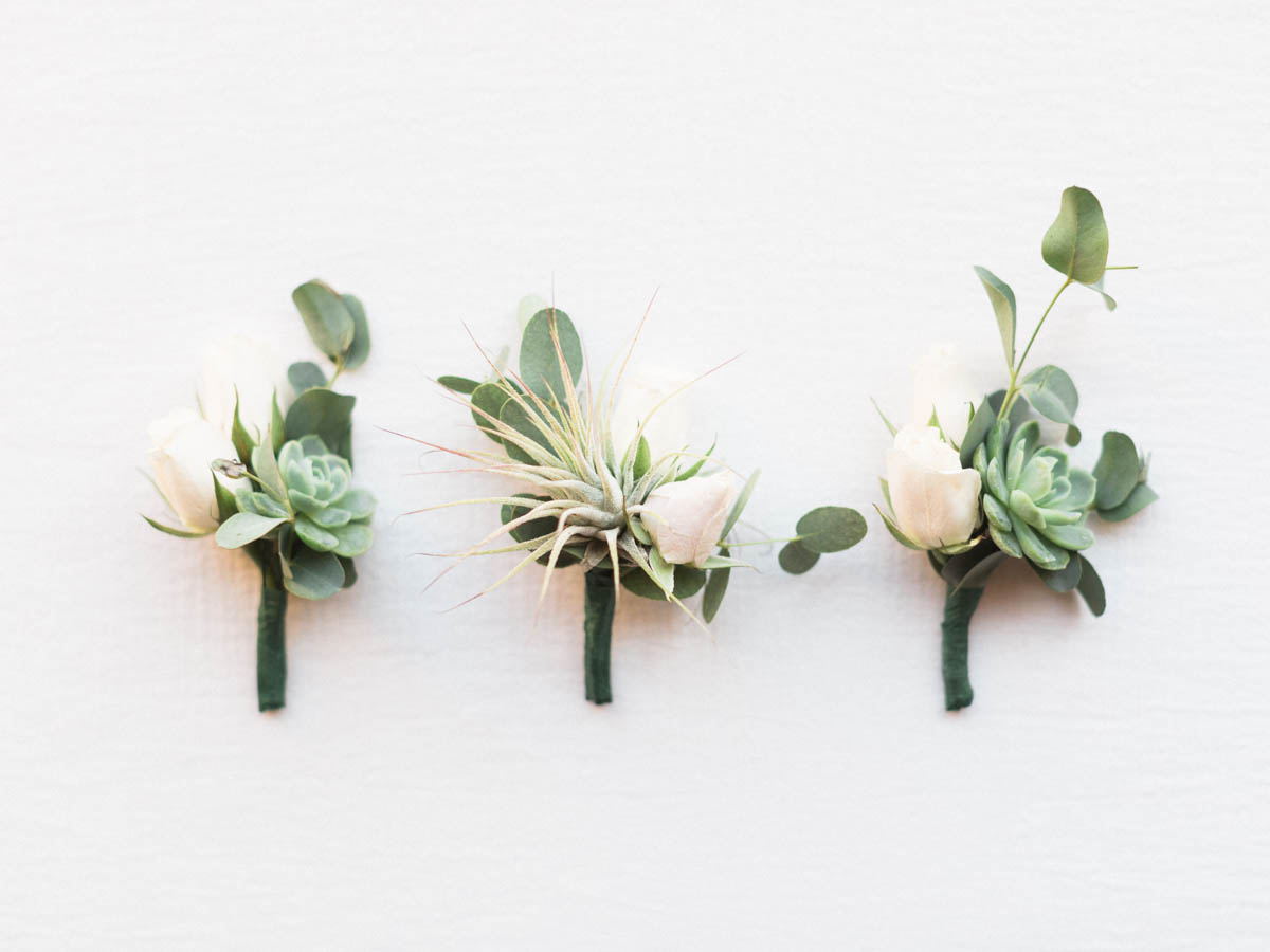 Air plant boutonnieres captured by Tucson Wedding Photographers Betsy & John