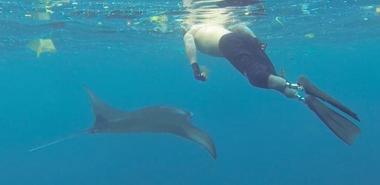 Manta Nick snorkel Bali.jpg