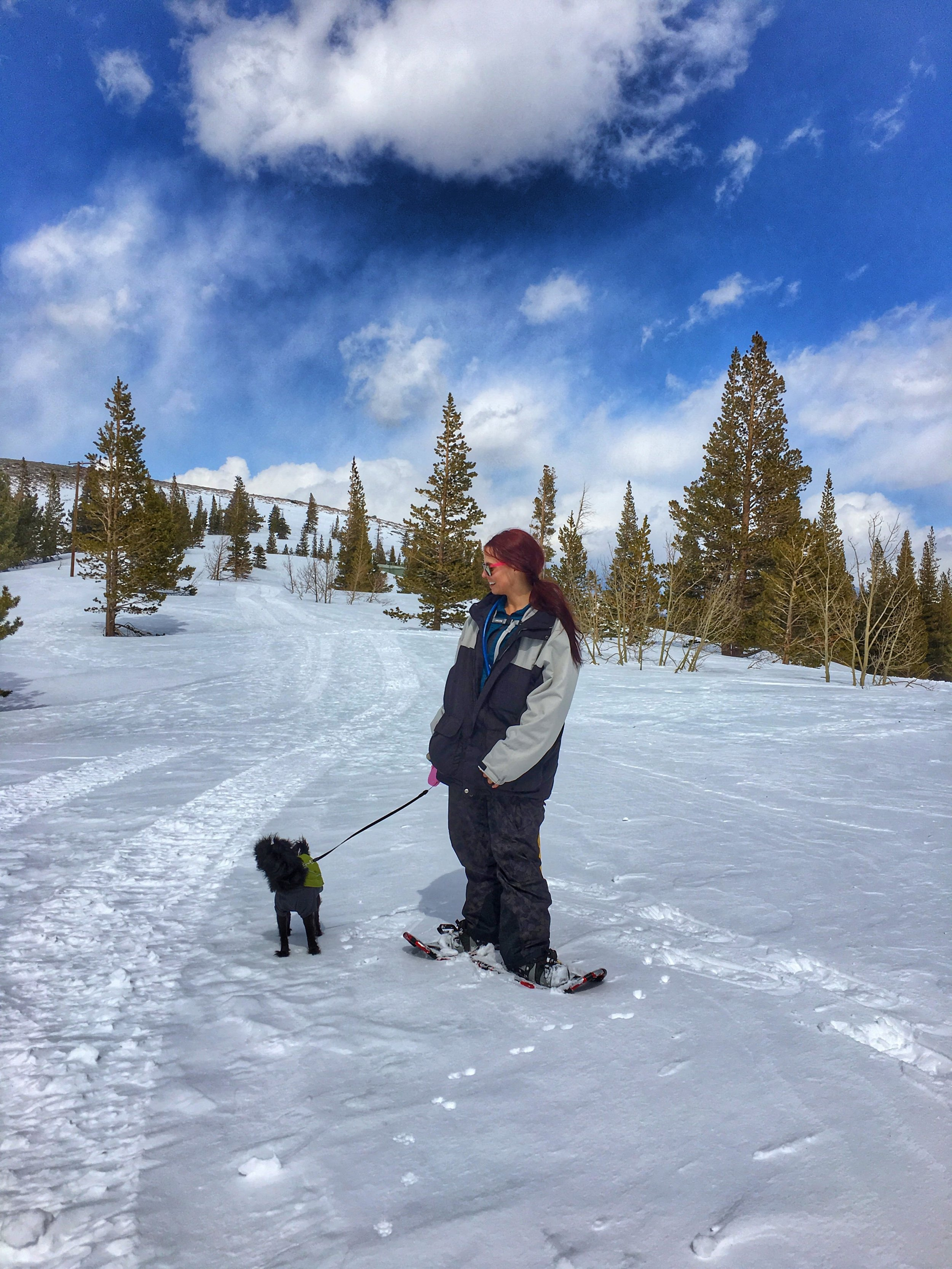 I discovered I love snowshoeing!