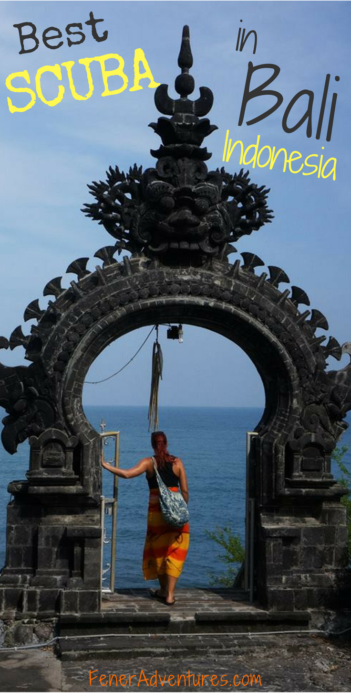 Best SCUBA Bali Pinterest.png