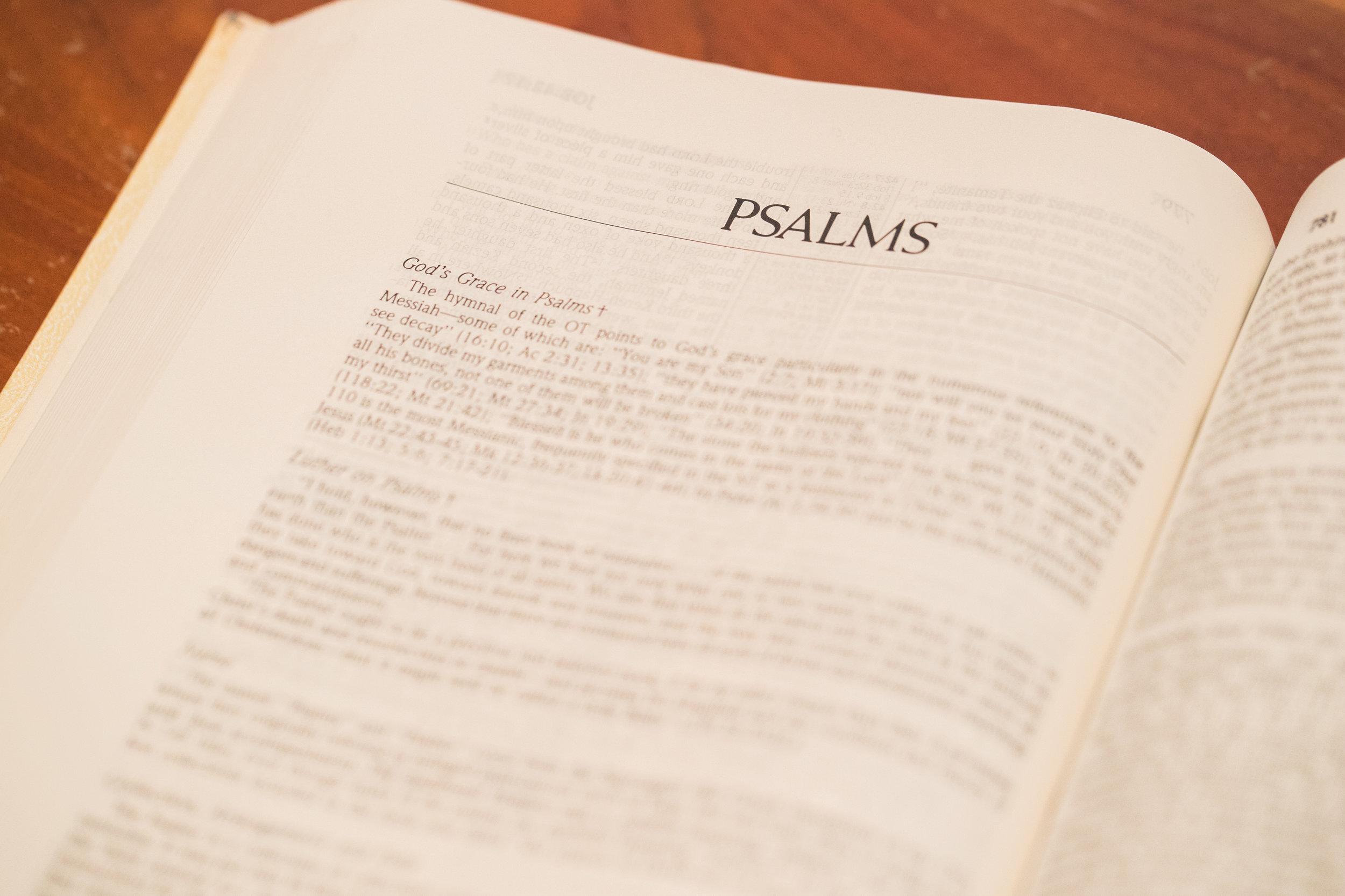 Psalms 2.jpeg