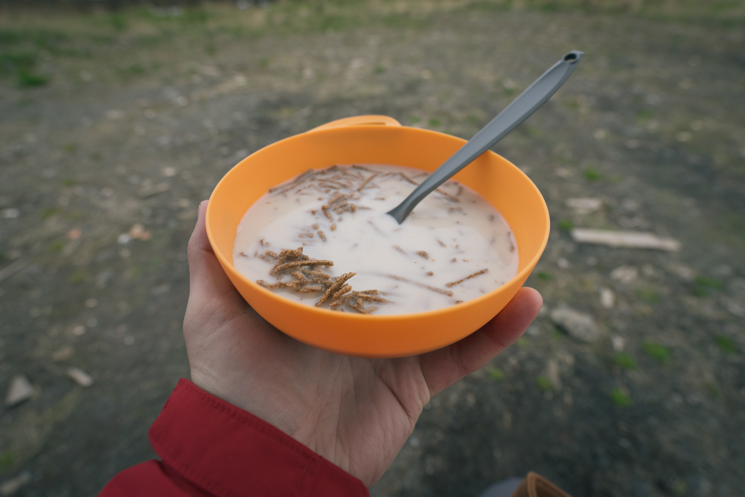 Whole grain cereal with almond hazelnut milk. Actually pretty good.