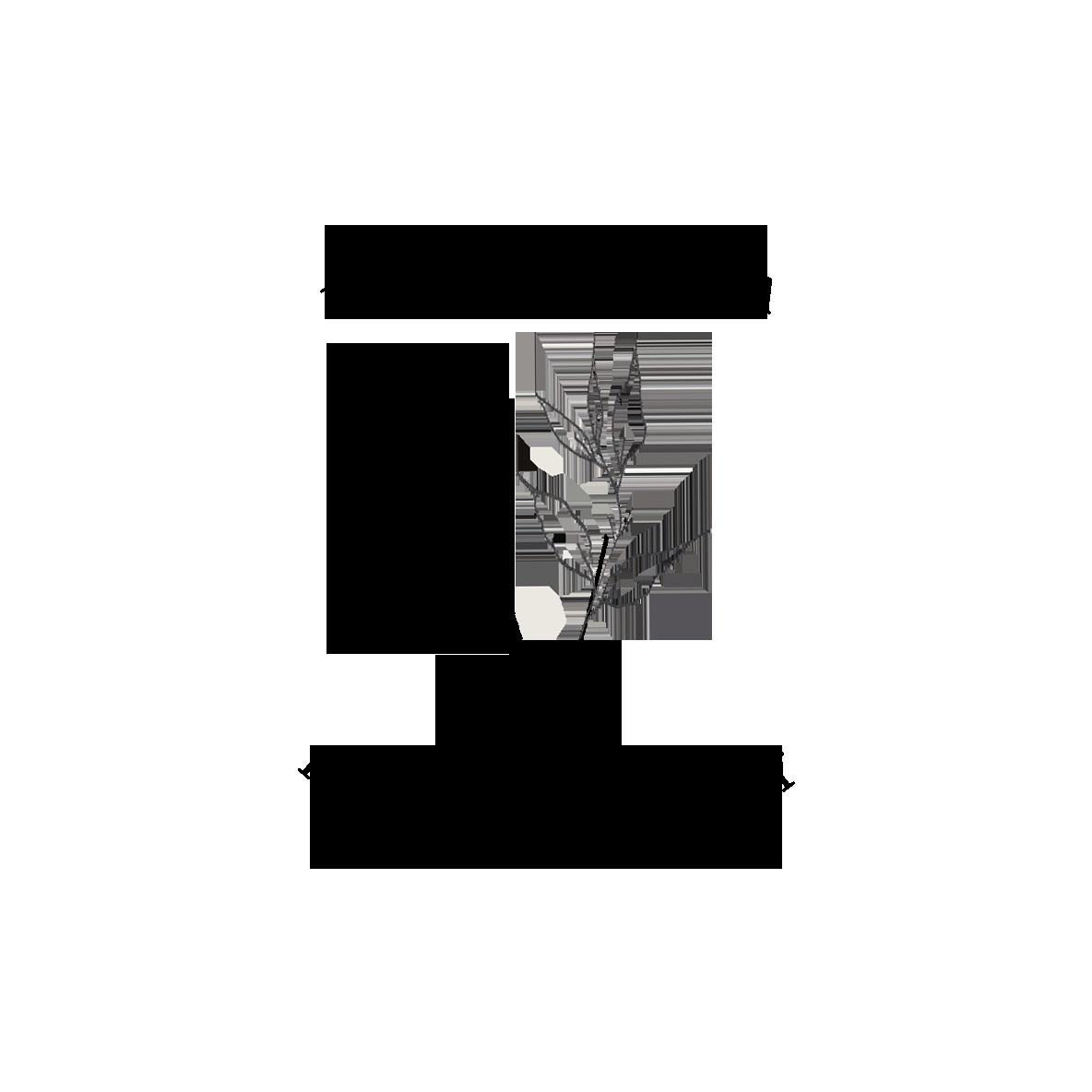 eunice vesa logo 2019 black square.png