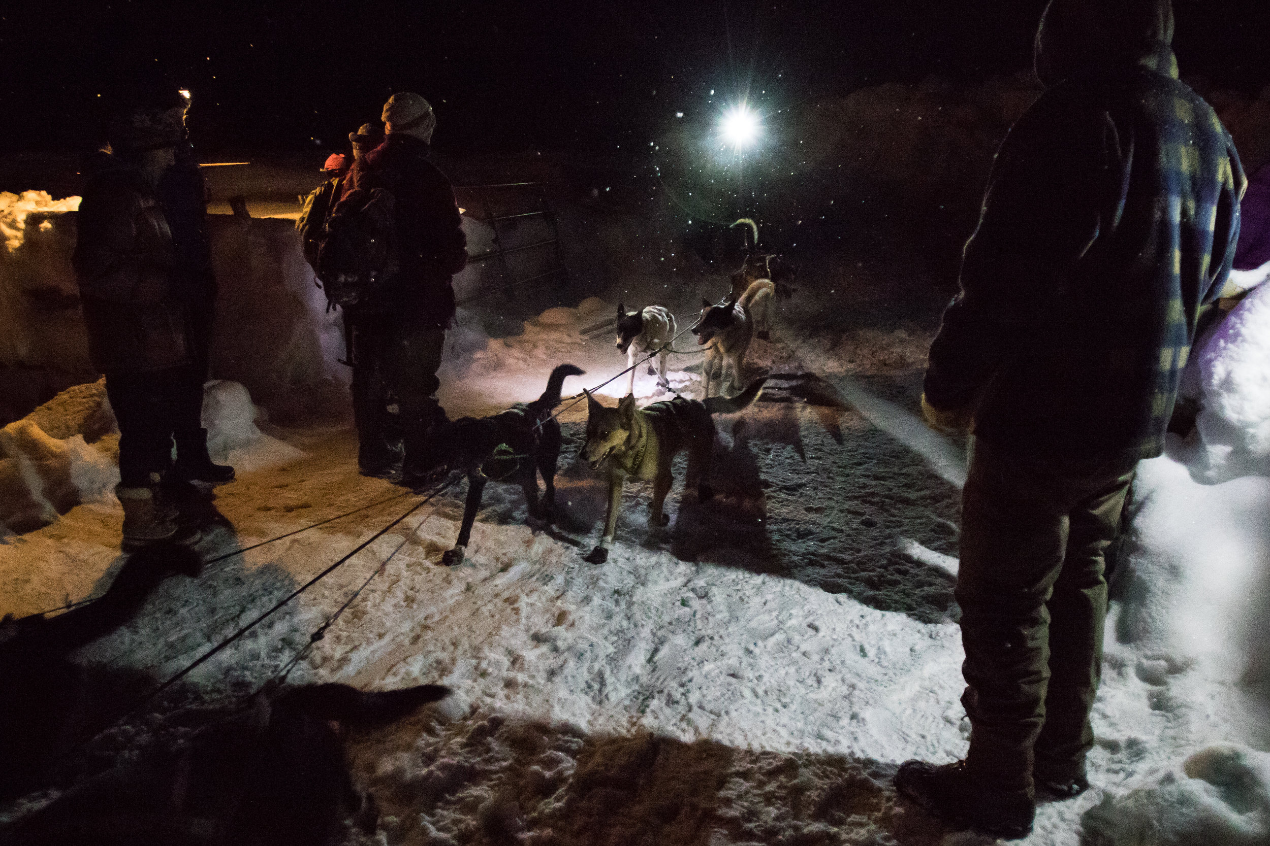 A musher passes checkpoint one at White Tail Ranch late Saturday night, 50 miles from the start of the race. While most mushers took this opportunity to tend to their dogs and take short naps, some teams continued straight through the checkpoint.