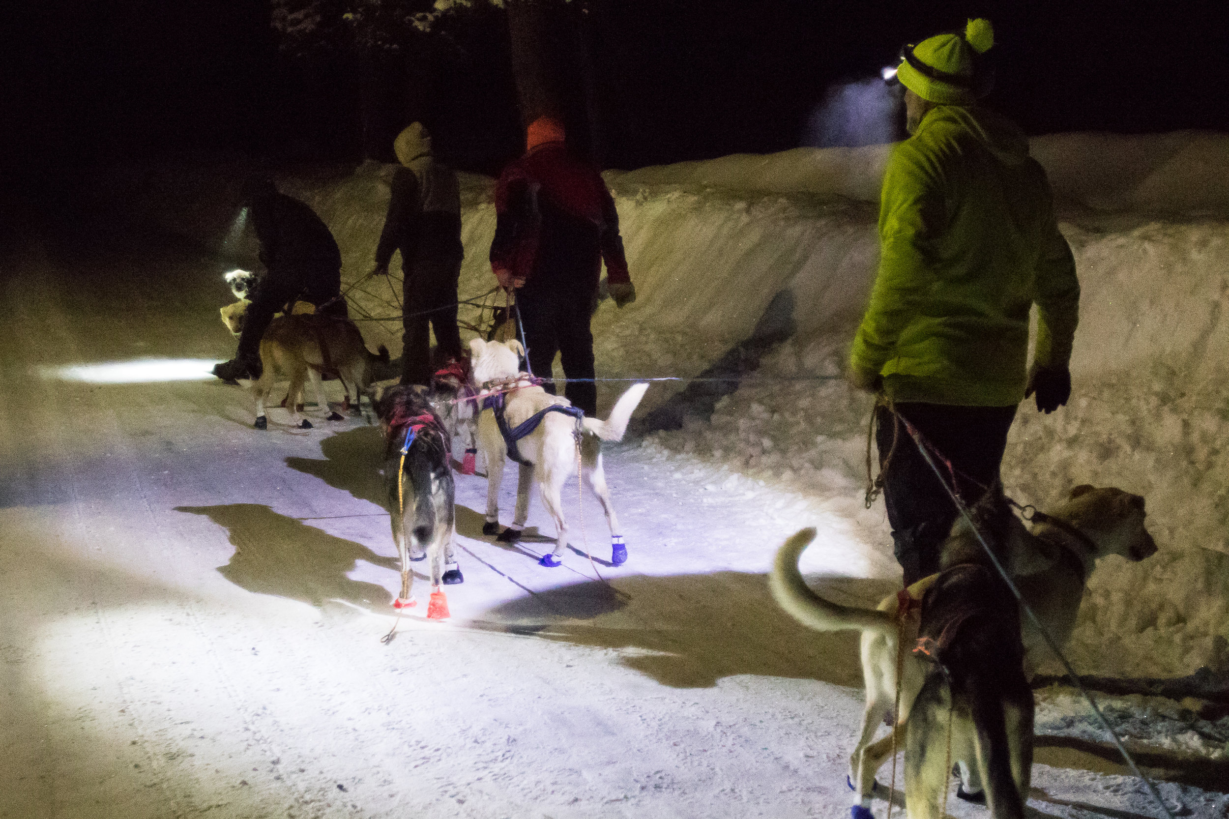 Team members and volunteers assist a 300-mile musher before dawn on Sunday morning at checkpoint two in Seeley Lake.