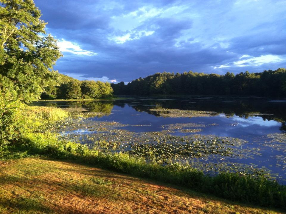 Why I call Rhode Island home: my backyard.