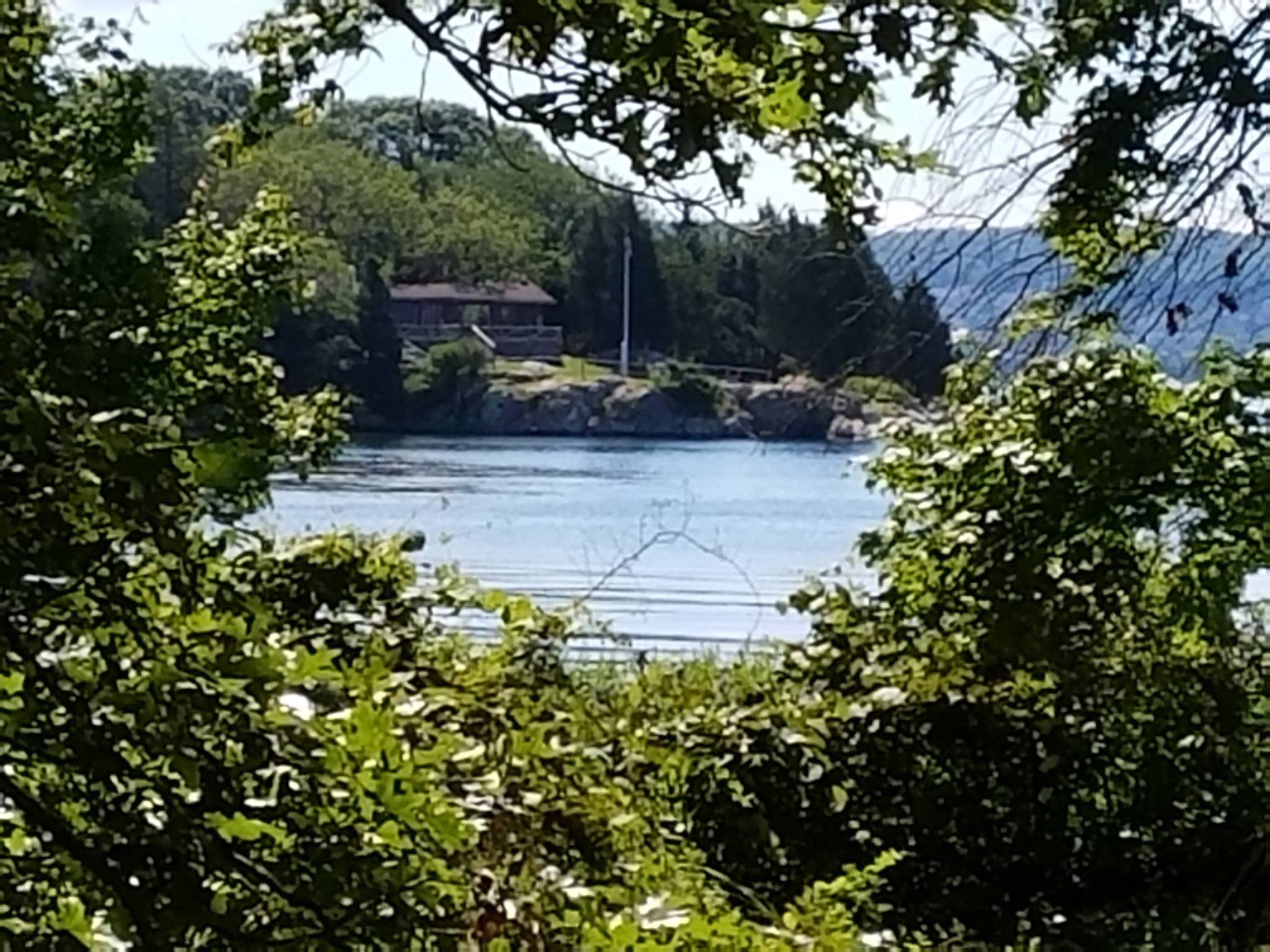 cove cabin from across inlet.jpg