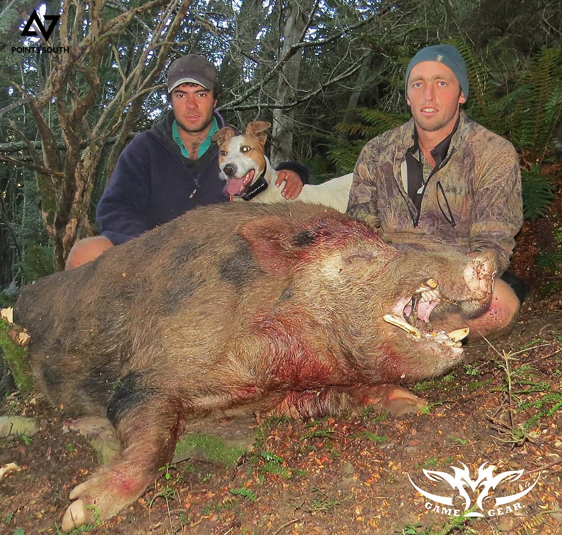 Dan Keys and Ryan Carr with their first pig of the morning