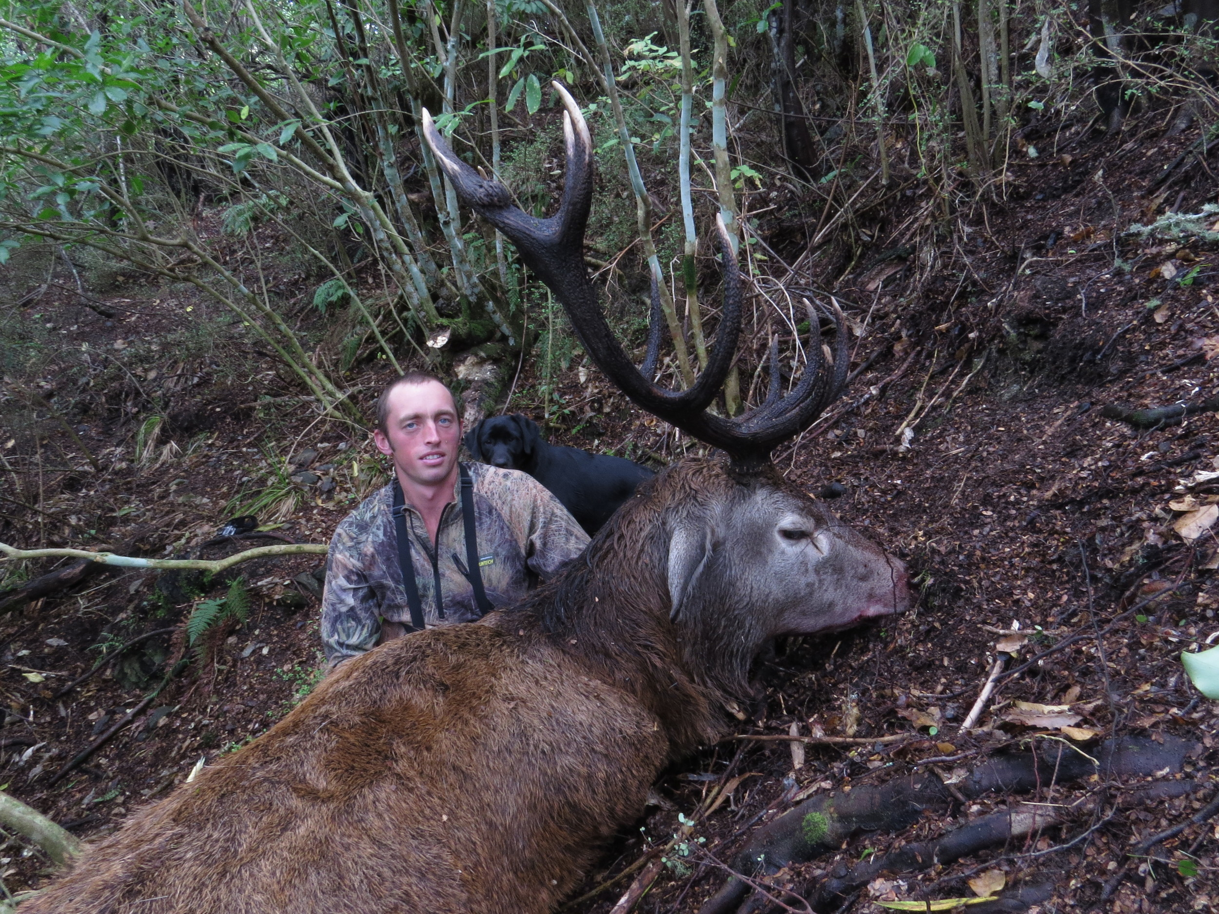 Ryan Carr with his big red stag that he shot down through a small gap in the trees - photo by Johnny Wigley