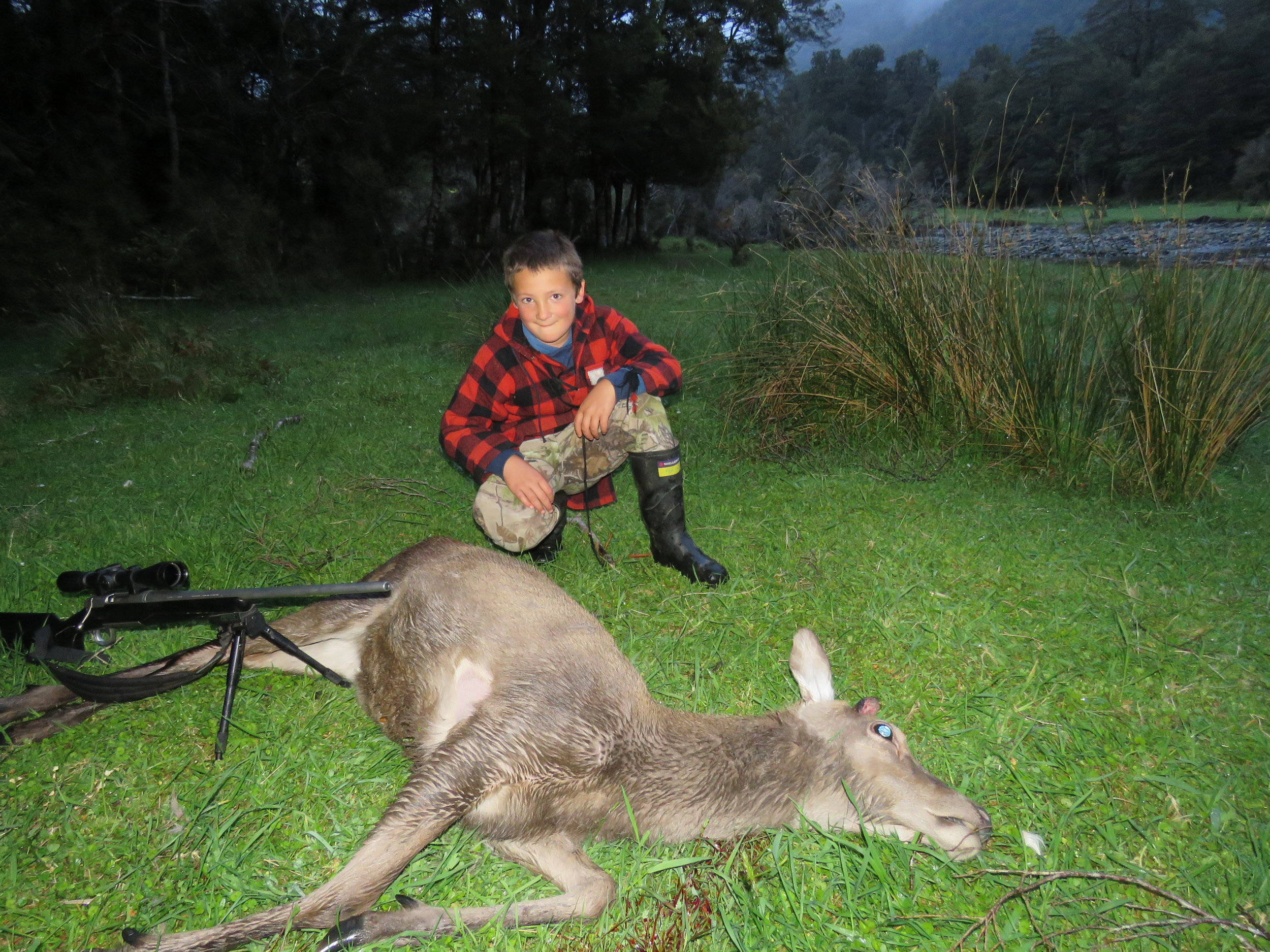 George Monk with the yearling red deer, caught out on the Spring growth late in the evening.