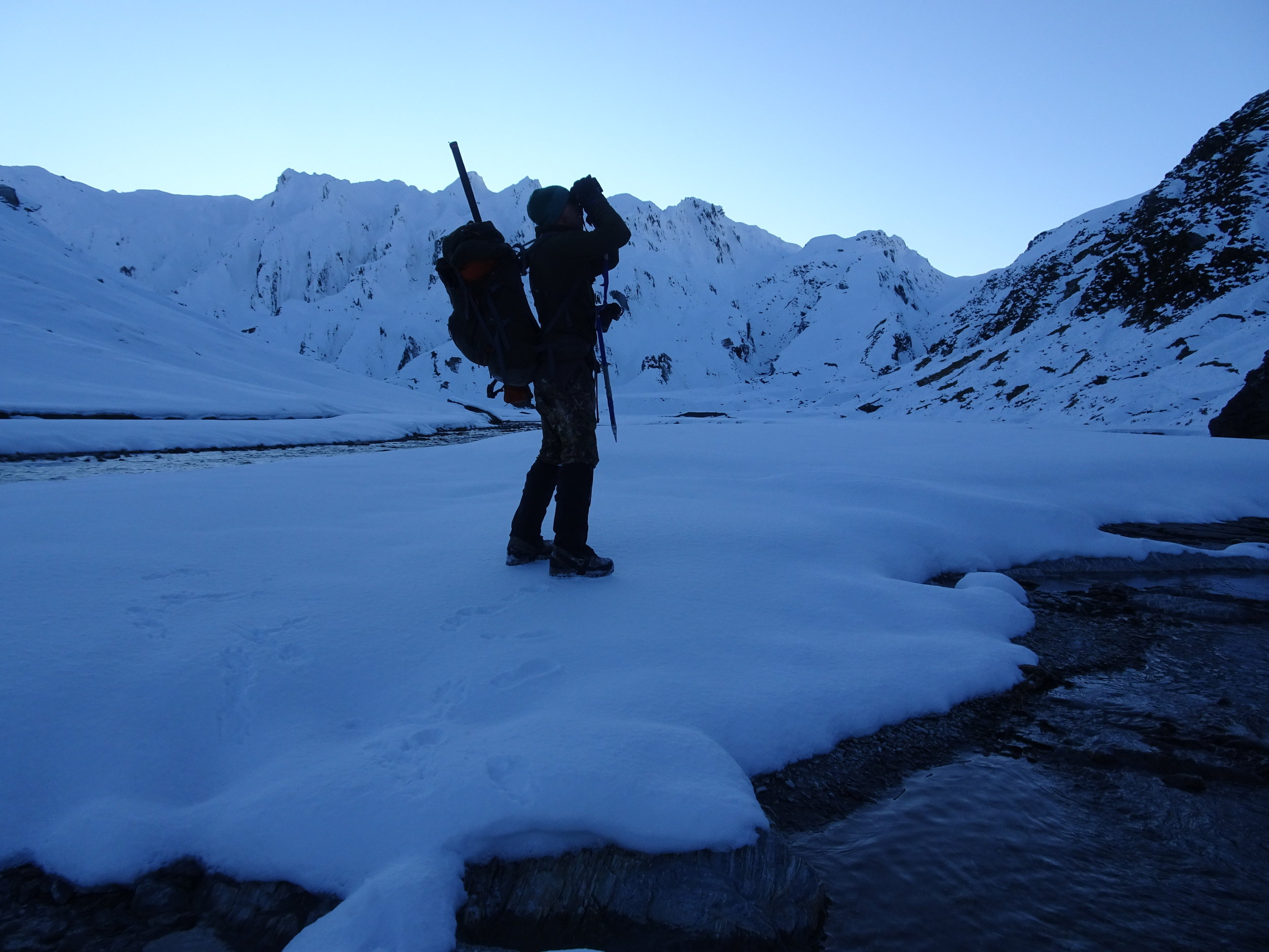 glassing for tahr in the snow