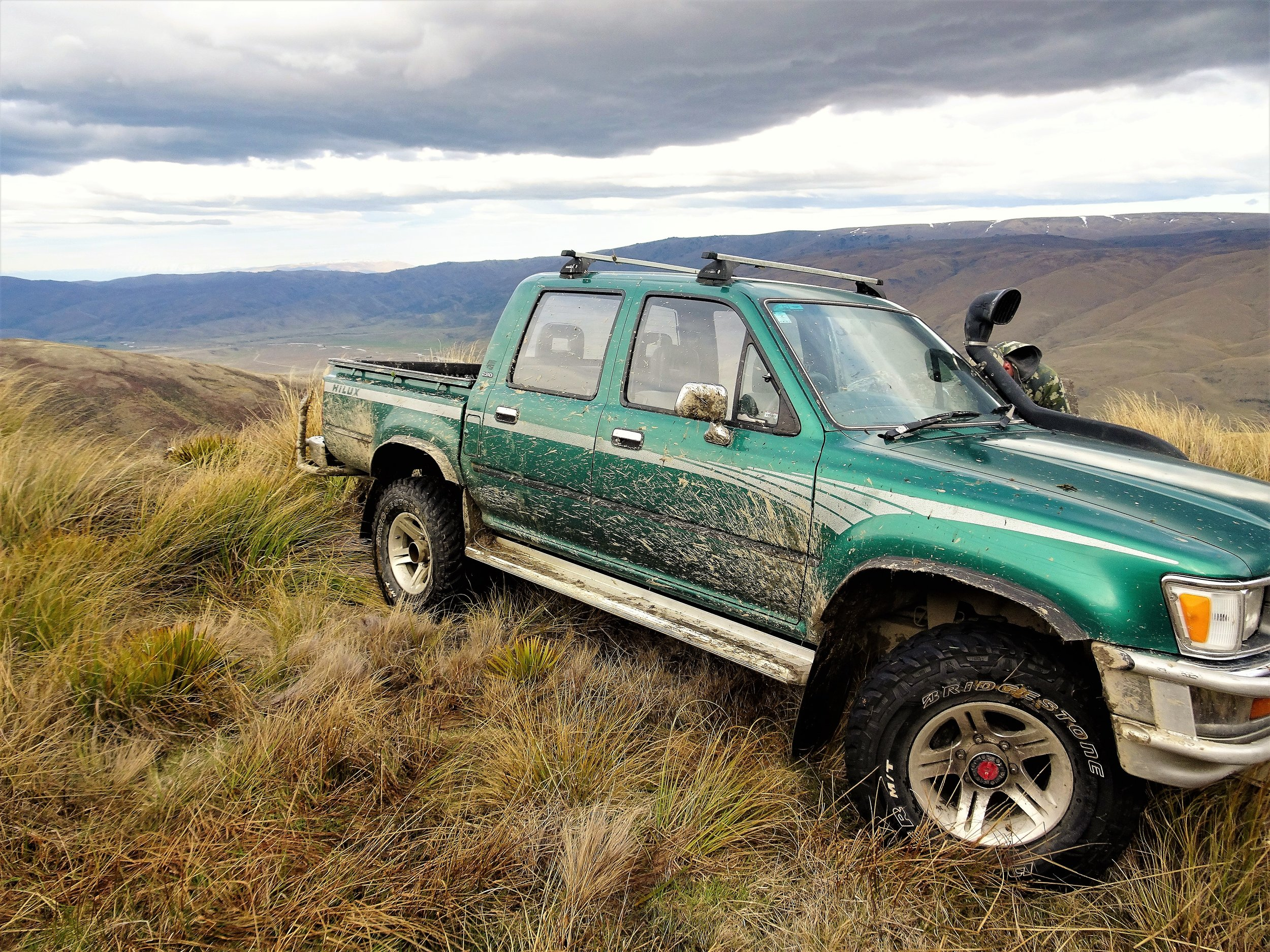 toyota hilux high in the tussocks of otago