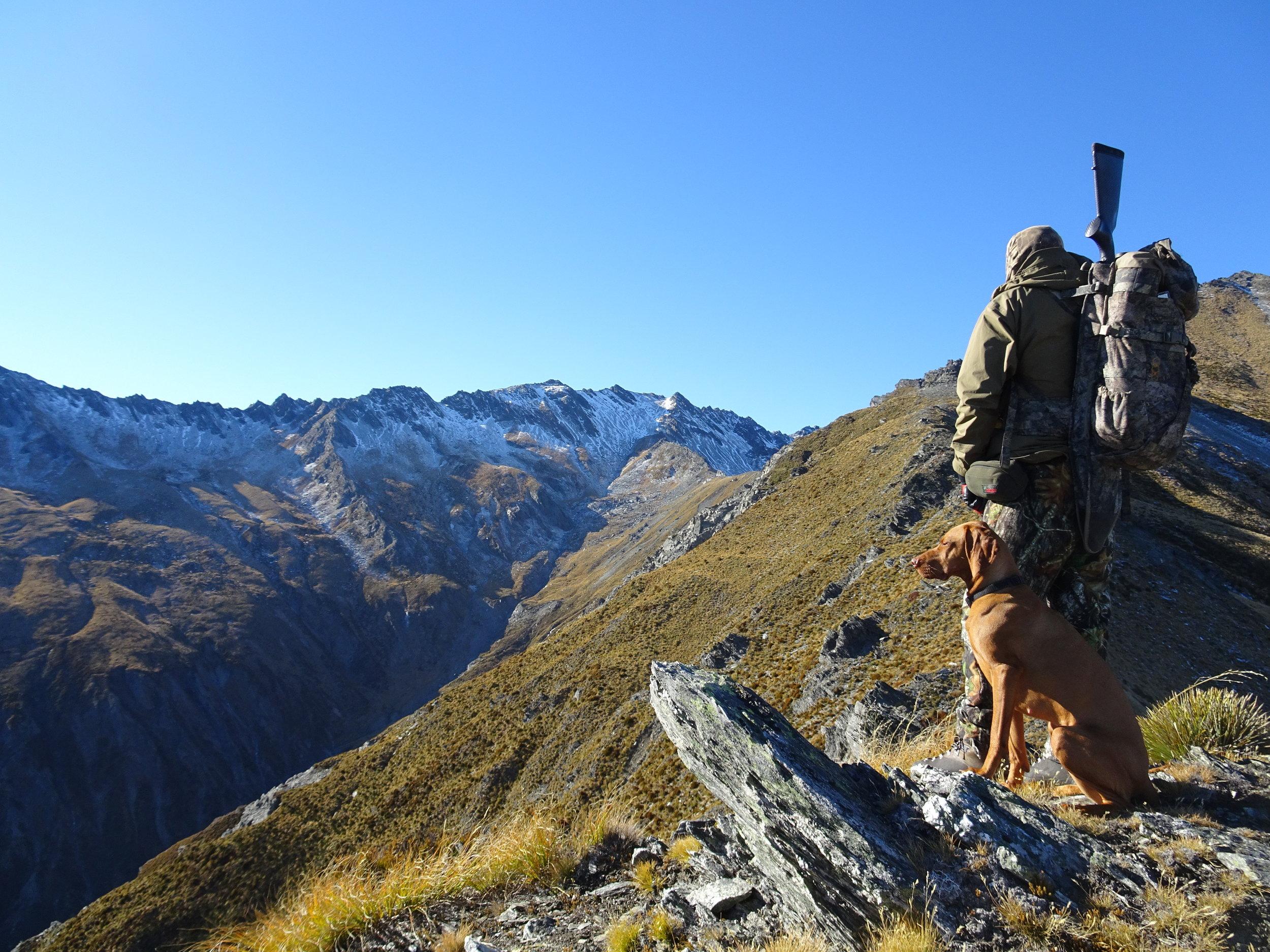 Chamois Hunting.JPG