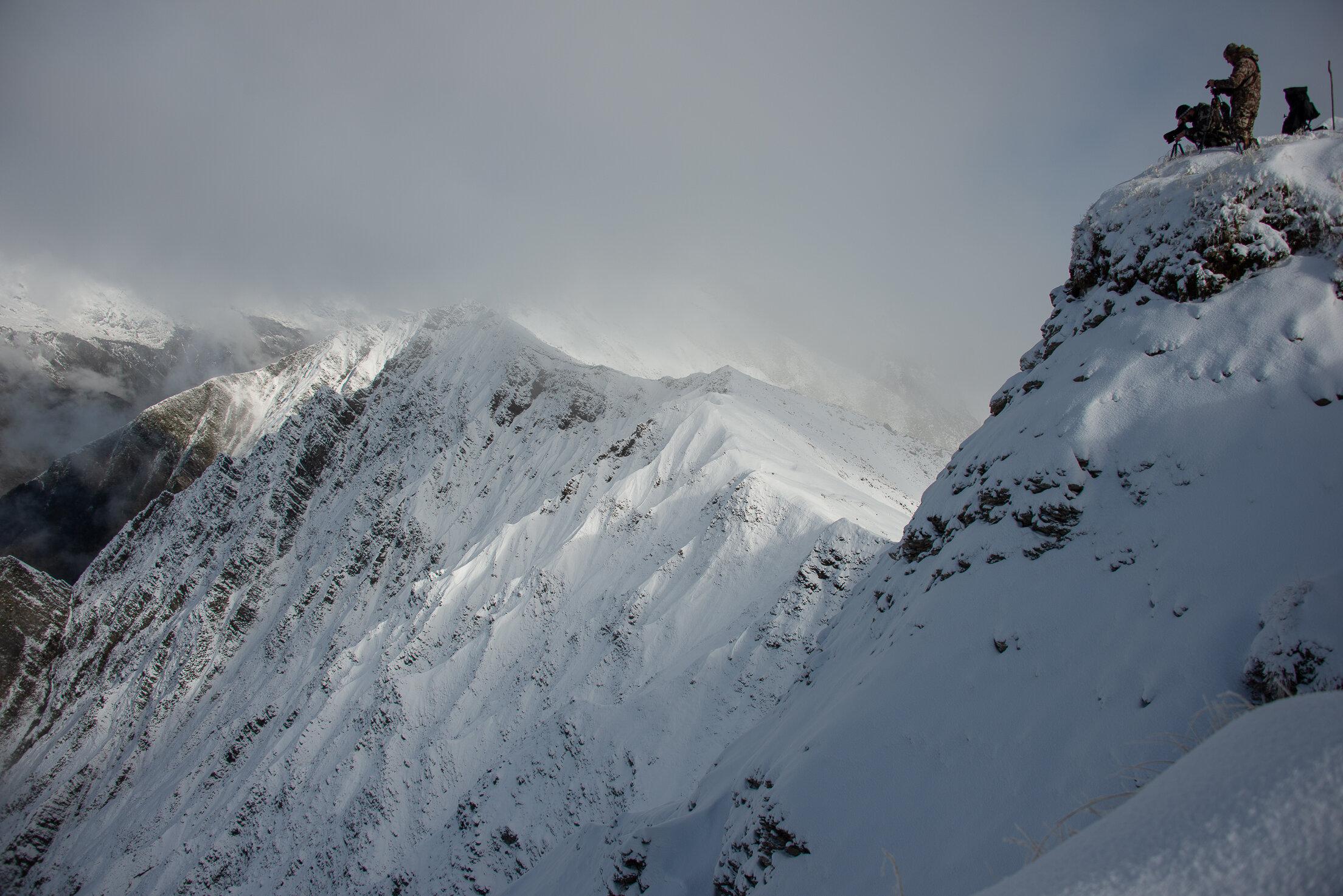 tahr hunters on a ridge Credit - Sean Powell