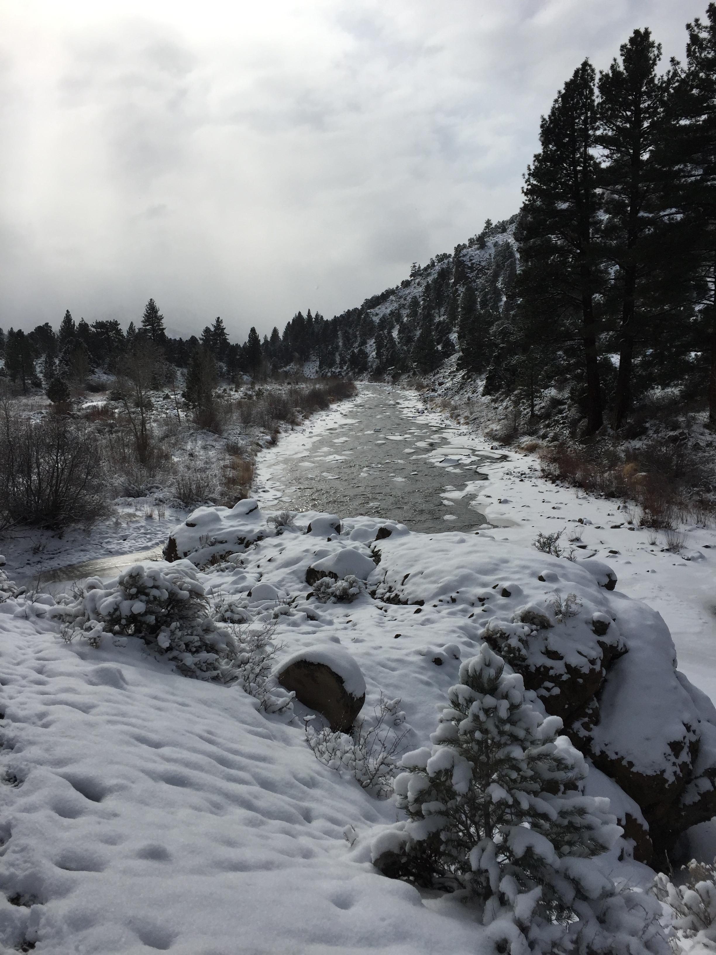 The Carson River