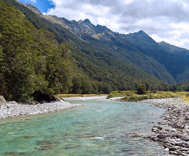A magic stretch of river for both body and mind #scenery #flyfishing #nz