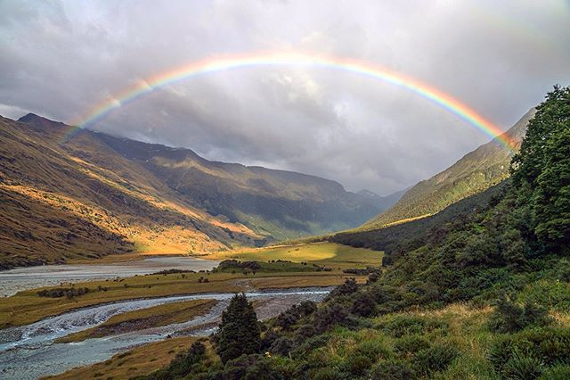 Morning full of promise  #flyfishing #nz #rainbow