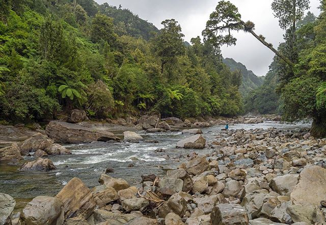 A challenging but rewarding stretch of backcountry water  #exploration #nz #flyfishing