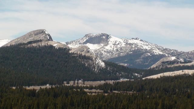 Tuolumne Peak and Meadows