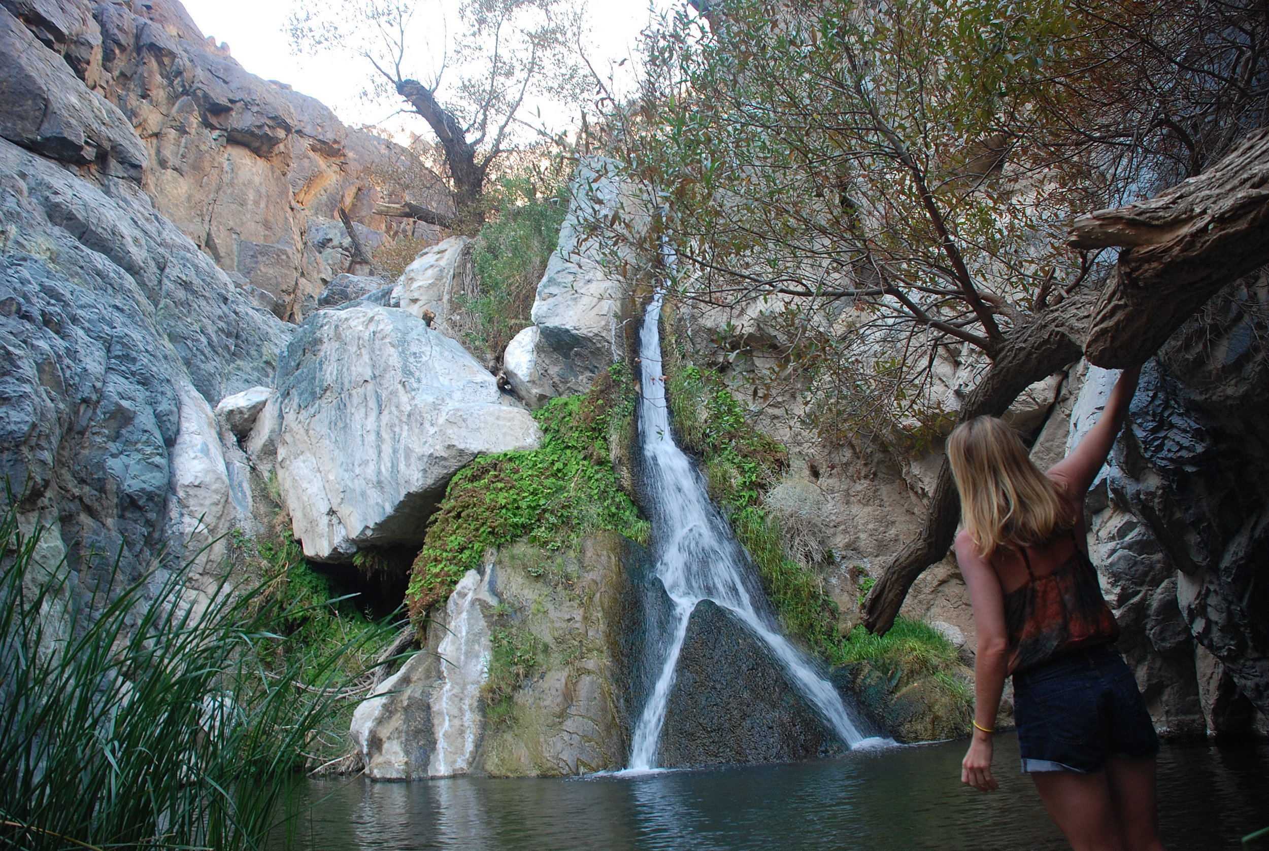 Darwin Falls (a short drive from camp)