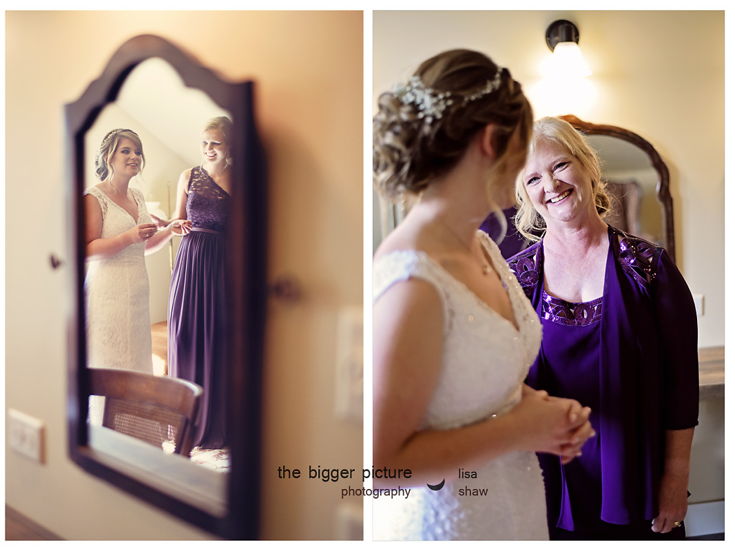 wedding photographers michigan.jpg