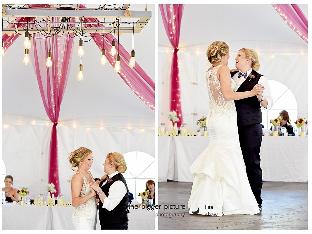 detroit mi wedding engagement photographer.jpg