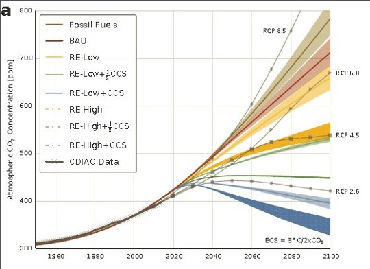 Atmospheric carbon concentration [ppm] in the various scenarios, shown with CDIAC data and RCP projections © Walsh et al, 2017 IIASA
