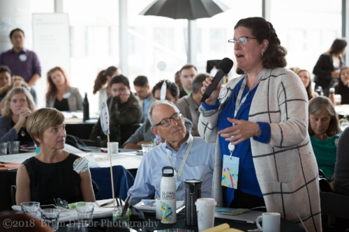 Marianna Grossman, Minerva Ventures with Bruce Riordan, Climate Readiness Institute and Julie Henderson, Cal EPA at Education workshop during GCAS.