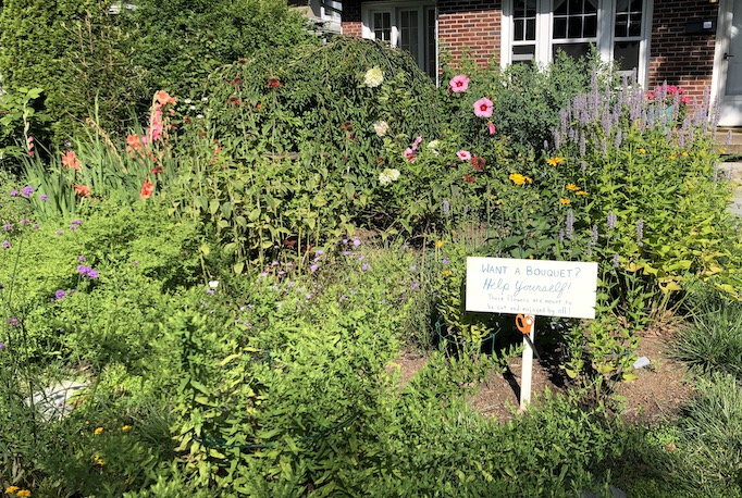 Garden in Asheville, NC that invites neighbors to cut bouquets to take home. Inspired by Little Free Libraries.
