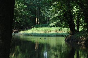 Honey Creek Preserve - Honey Creek Preserve is part of the Honey Creek Watershed which stretches over 143 square miles. Located in the park is a mile long nature trail that follows along Honey Creek, through a prairie, wetland and woodlands. 4536 State Route 202, Tipp City, Ohio 45371