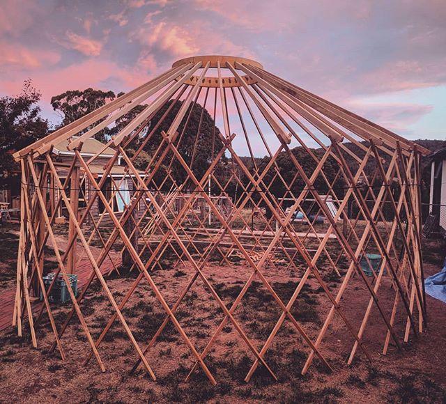 5m yurt framework coming along nicely... 👌 #getdownandyurty #yurt #tasmania