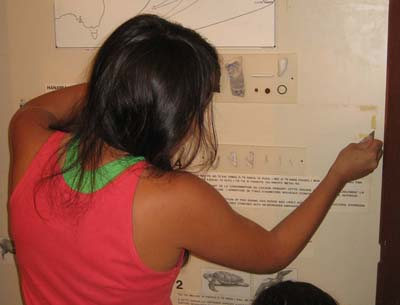 2010. AFAR and the Tahuata community collaborate for the first major changes to the museum since 1998. In action: Ren MacDonald, member of the 2010 field school.