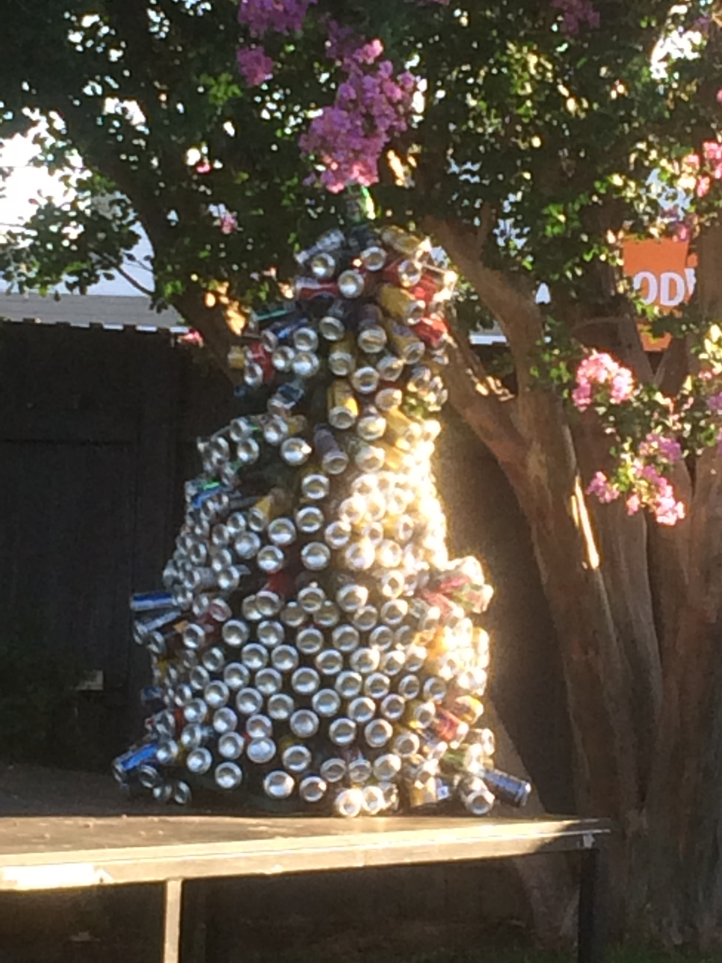 Christmas at the pub in Oz.....yes that christmas tree is made of beer cans.
