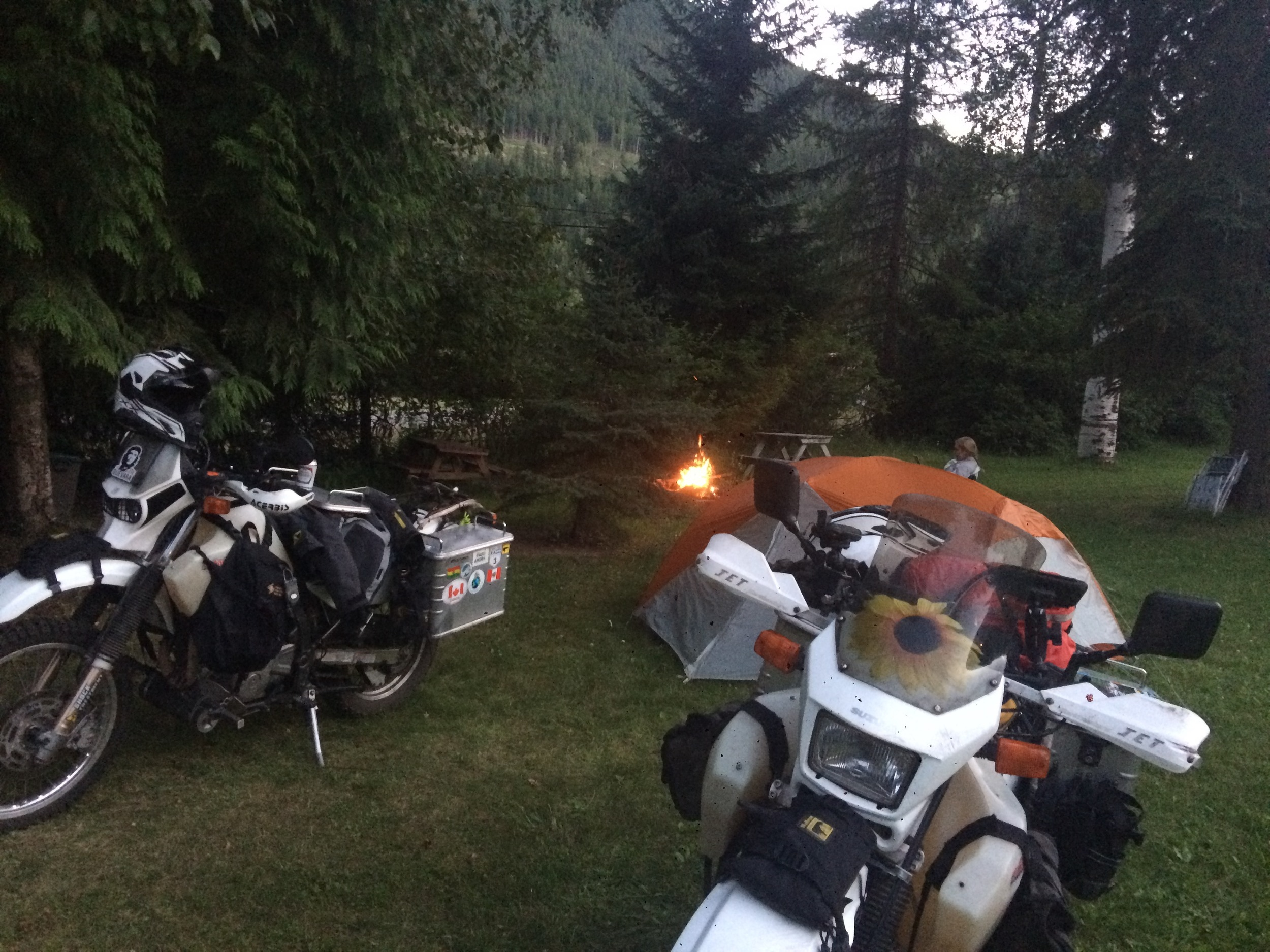 Nice grassy spot and a campfire near Salmo, BC