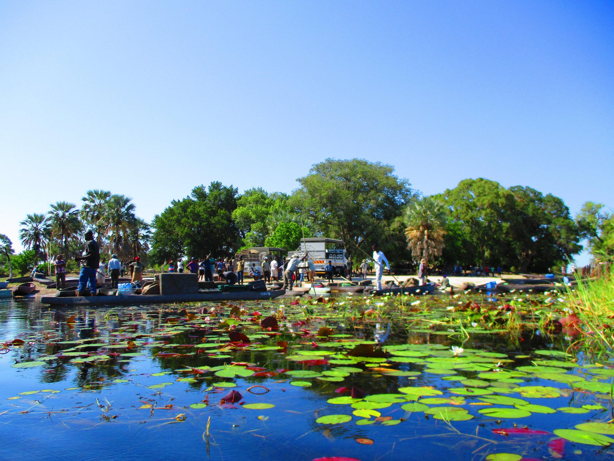 The start of our Mokoro trip on the Okavango Delta