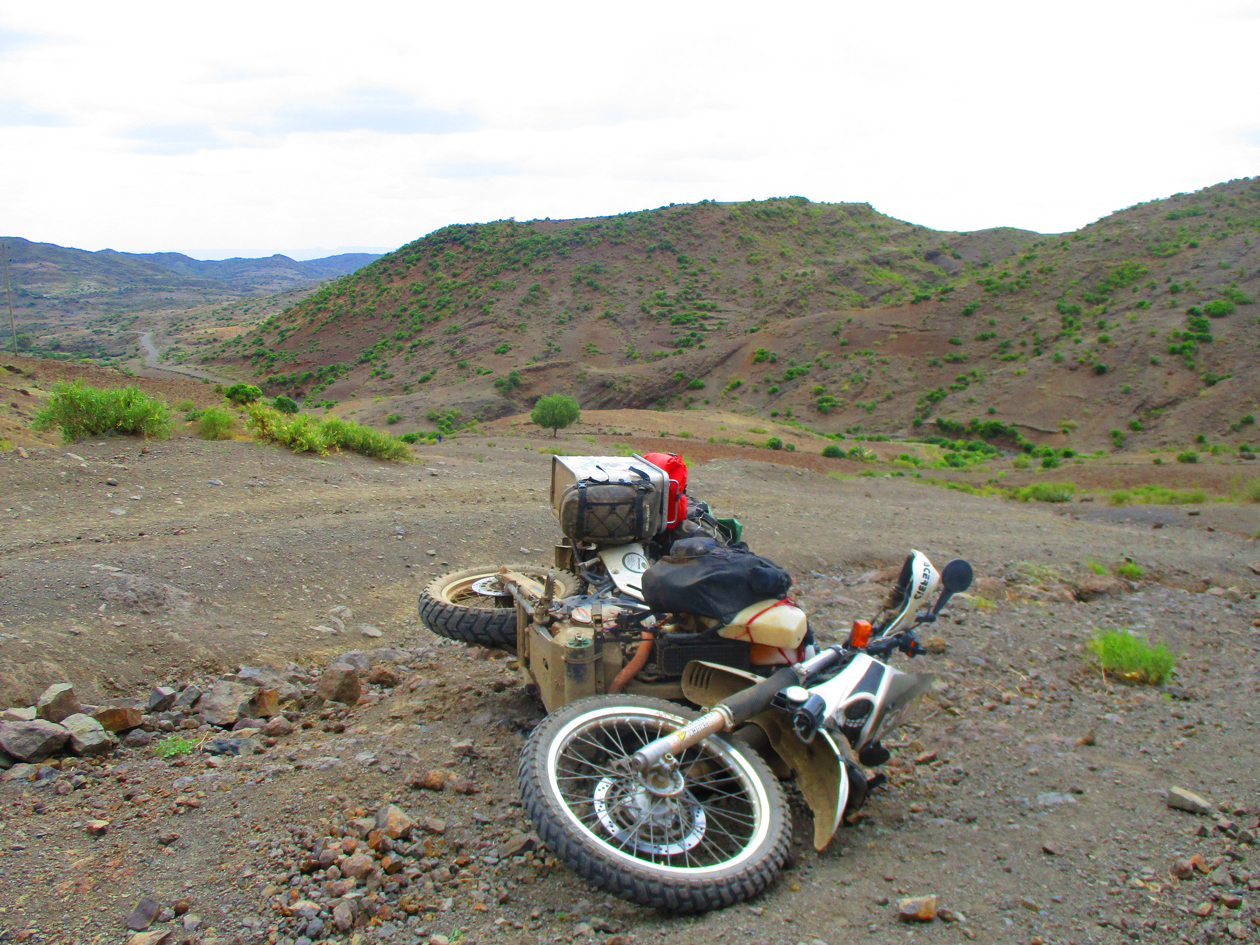 Poor Wallace on the Old Lalibela Road.