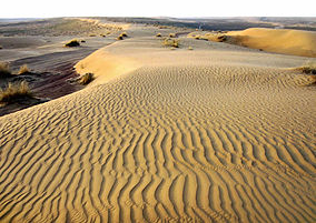 https://en.wikipedia.org/wiki/Bereketli_Garagum_Nature_Reserve