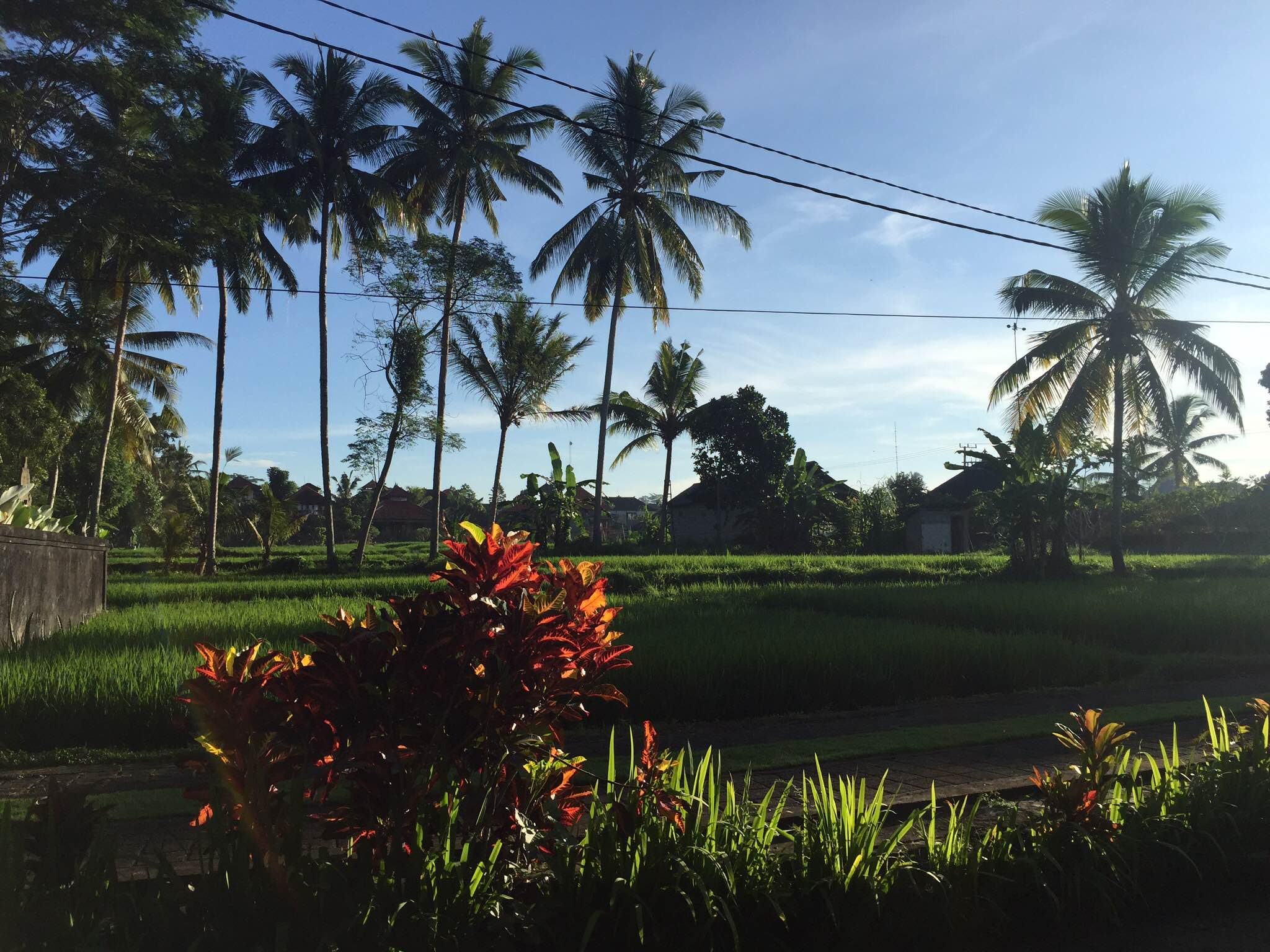 The tropical paradise with countryside like landscape
