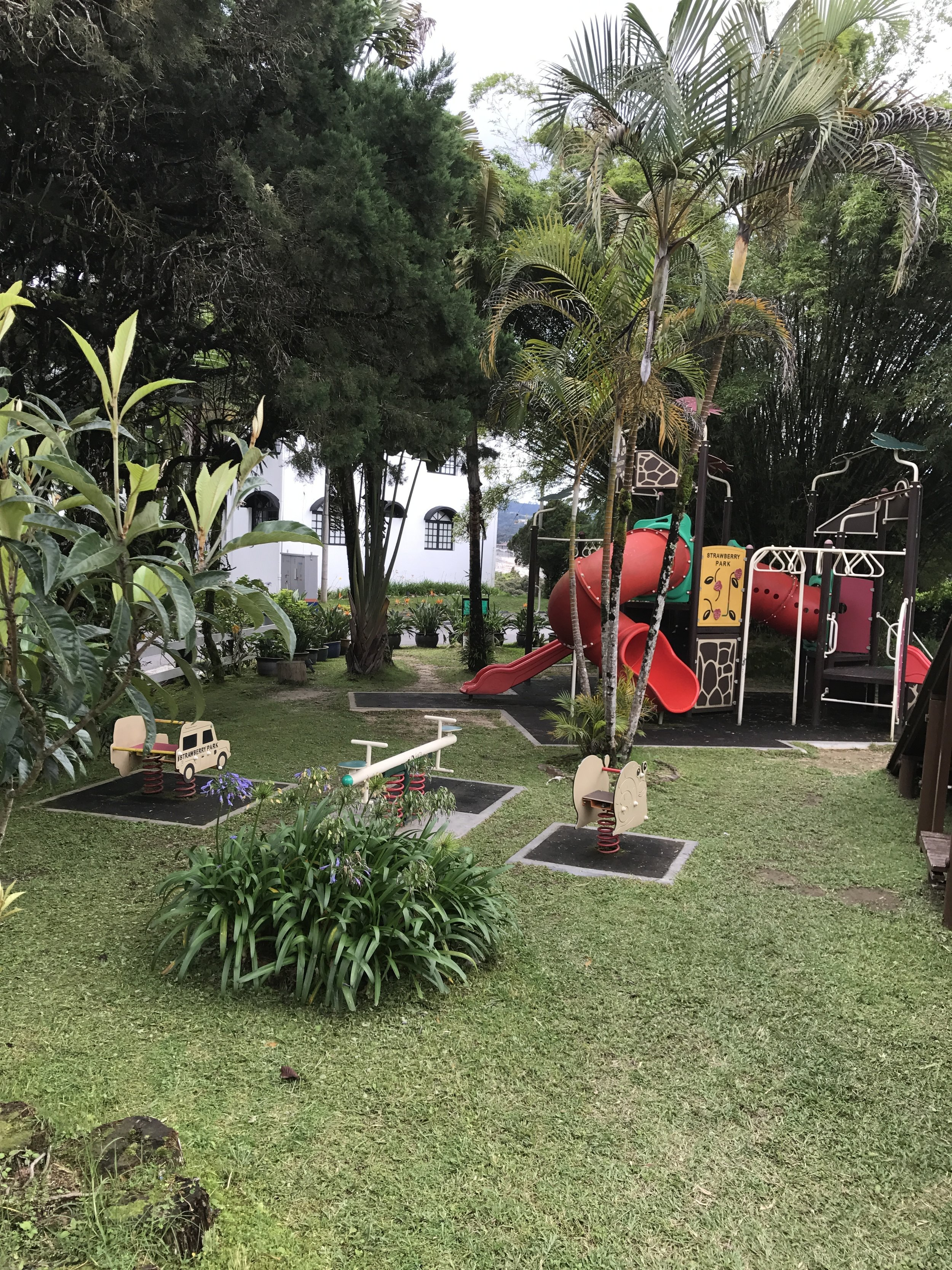 Play area at Strawberry Resort, Cameron Highlands