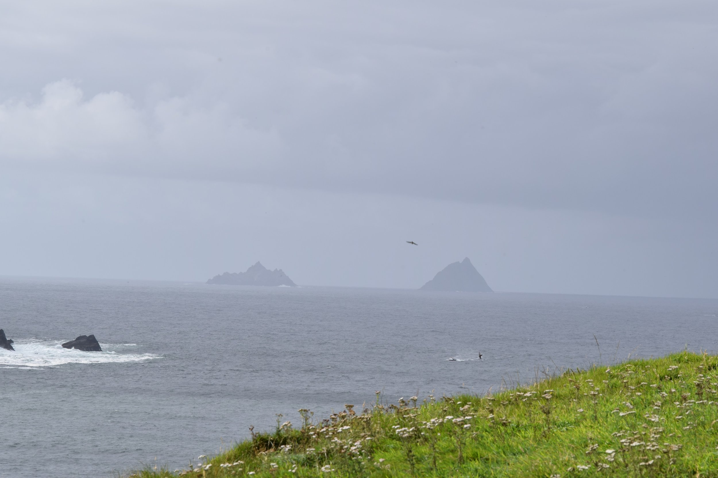 Skellig Islands in the distance- we plan to come back and see them by boat someday!