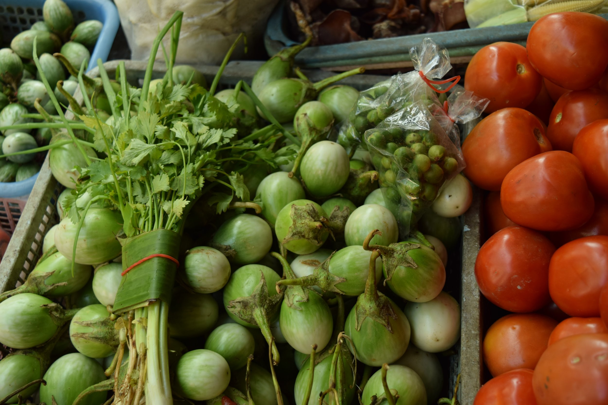 The round green things above are Thai eggplant! even the very small pea-looking things in the bag. Eggplant is used in green curry. Yum!